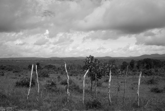 CAMBODIA. Prey Chit (Koh Kong). 23/08/2009: Land which is under threat of an eviction.